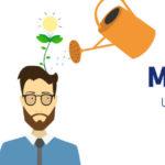 Ayúdanos a analizar el estado actual del mentoring